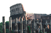 Antiquity Photos - The Colosseum and Columns of the Via Sacra by Tom Wurl