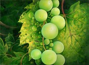 Plain Air Paintings - The Grapes by Anna Ewa Miarczynska