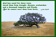 Global Warming Digital Art - The Last Tree John Muir Quote by Barbara Snyder