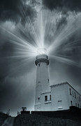 Svetlana Sewell - The Light House