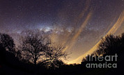 Bare Trees Metal Prints - The Milky Way Behind A Rural Landscape Metal Print by Luis Argerich