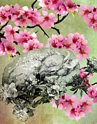 Apple Blossoms Mixed Media Prints - The Rain is Over And Flowers Appear on the Earth Print by Sarah Wathen