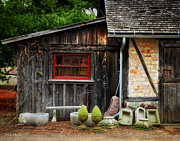 Pine Trees Digital Art - The Shed at Monches Farm by Mary Machare
