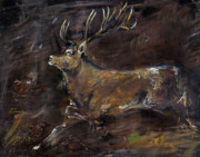 Stag Metal Prints - The Stag Metal Print by Angel  Tarantella