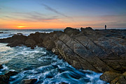 Jamie Pham Metal Prints - The Watcher - Rocky Asilomar Beach in Monterey Bay. Metal Print by Jamie Pham