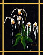 Barbara Griffin - The Wizard Slipper Orchid