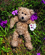 Engagement Photo Metal Prints - These Are For You - Cute Teddy Bear Art By William Patrick and Sharon Cummings Metal Print by Sharon Cummings