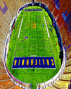 Stadiums Art - This Is Bear Territory 5D24682 by Wingsdomain Art and Photography