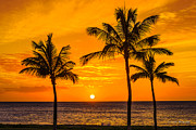 Eric Evans - Three Palms Golden Sunset in Hawaii
