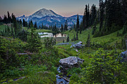 Mount Rainier Framed Prints - Tipsoo Meadows Framed Print by Mike Reid
