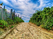 Sand Fences Prints - To the Beach Print by Mark Miller