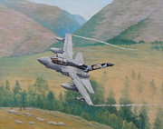 Plane Paintings - Tornado GR4 - Shiny Two Flying Low by Elaine Jones