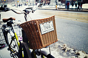 Bicycle Basket Prints - Toronto Islands Bicycle Print by Tanya Harrison