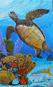 Baby Sea Turtle Framed Prints - Tortuga Framed Print by Carey Chen