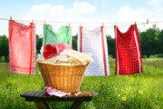 Sandra Cunningham - Towels drying on the clothesline