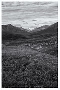 White And Black Landscapes Posters - Tundra Valley Poster by Priska Wettstein