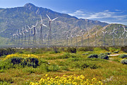 David  Zanzinger - Turbine Wind Farm San Gorgonio Pass...