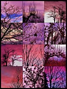 By Barbara St. Jean Framed Prints - Twelve Wishing for Spring Framed Print by Barbara St Jean