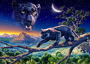 Panther Framed Prints - Twilight Panther Framed Print by Adrian Chesterman