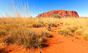 Outback Photos - Uluru Ayers Rock by Bill  Robinson