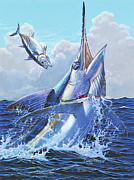 White Marlin Framed Prints - Unexpected Off0093 Framed Print by Carey Chen