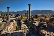 Roman Ruins Digital Art Posters - Volubilis 2 Poster by Phil Dyer