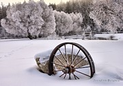 Wagon Wheels Originals - Wagon Wheel by Roland Stanke