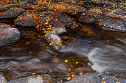 Jenny Rainbow - Water Flow through the Boulders....