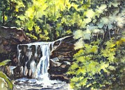 Carol Wisniewski - Waterfalls in Central Park N Y C