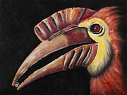 Hornbill Painting Framed Prints - Weldens South American Horn-bill Framed Print by Paul Mudersbach