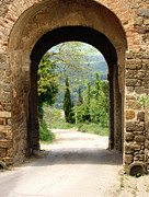 Montalcino Posters - What Lies Ahead Poster by Ellen Henneke