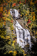 Outlook Prints - Whitewater Falls Print by Penny Lisowski