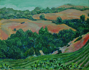 California Vineyard Paintings - Wine Country by Tim Lutrey