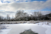 Icy Digital Art Prints - Winter At Boland Pond Print by Christina Rollo