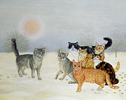 Ditz - Winter Cats
