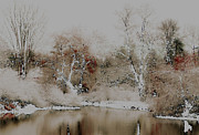 Wintry Digital Art Prints - Winter on the Middle Maitland River Print by Pete Daize