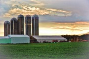 Silos Mixed Media Posters - Wisconsin Farm 8 Poster by Todd and candice Dailey