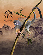 Zodiac Digital Art - Year of the Monkey by Schwartz