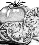 Ink Drawing Painting Framed Prints - You Say Tomatoes.... Framed Print by Marilyn Healey