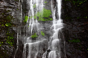 Bolivia - Yungas Waterfall Detail by James Brunker