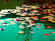 Hommage Prints - Zen Garden Water Lilies Pond Serenity And Beauty Lily Pads At The Lake Waterscene Art Carole Spandau Print by Carole Spandau