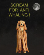Eric Kempson -  Scream For Anti Whaling
