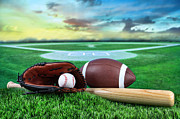 Sandra Cunningham - Baseball  bat  and mitt in field at...