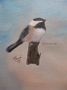 Betty Reineke - Black Capped Chickadee