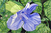 Singer Painting Originals - Blue Sky Vine by Debi Singer