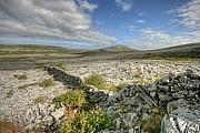 Burren National Park Fine Art Print by John Quinn