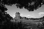 Dunguaire Castle Fine Art Print by John Quinn