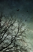 Woods Art - Flock of birds flying over bare wintery trees by Sandra Cunningham