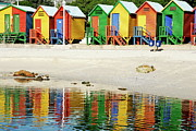 Getting Away From It All Posters - Multicoloured beach huts on Muizenberg beach Poster by Sami Sarkis