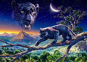 Panther Art - Twilight Panther by Adrian Chesterman